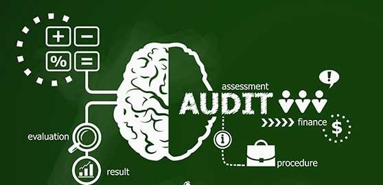 Optimizing Shari'a Audit for SEDCO Capital
