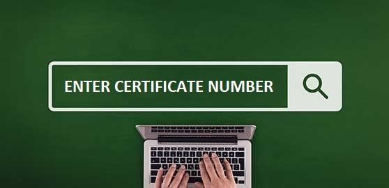 "SRB launches ""Verify Shari'a Certificate"" tool"
