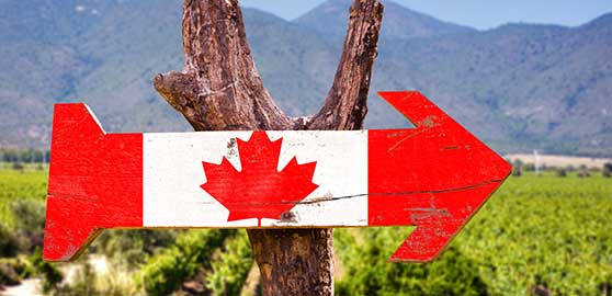 Canada grows Islamic Agricultural Fund
